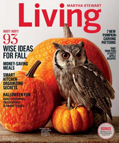 Period Panteez are in the Martha Stewart Living Magazine October 2014 Issue